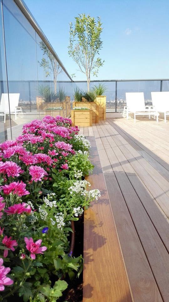 ואטרו אדריכלות נוף - גינות מרפסת