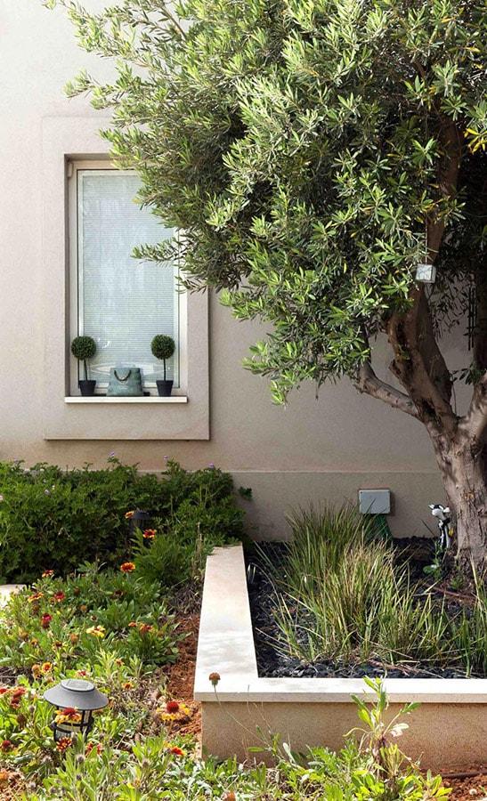 פרחים ועצים לגינה מעוצבת
