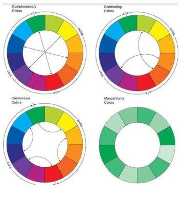 תכנון הצבעים בגינה