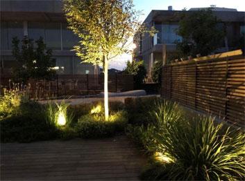 תכנון תאורה בגינה